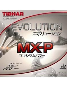 Borracha Tibhar Evolution MX-P