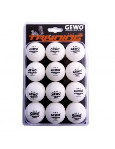 GEWO Training ball *** 40+ 12er